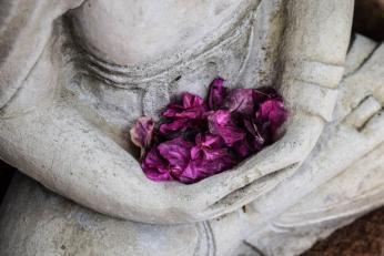 Meditasyon 1: Bir Kapuçino Hayali ile Yaşamak
